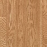 Barchester 8mm Golden Chardonnay Oak Strip Laminate