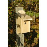 Joy Box Bird House
