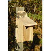 Western Blue Bird Bird House