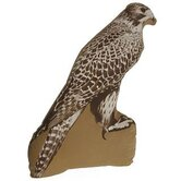 Falcon Large Cushion