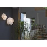 Nevo Wall / Ceiling Light