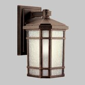 Cameron Fluorescent Outdoor Wall Lantern in Prairie Rock