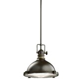 Fresnel 1 Light Pendant