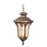 Oxford  Outdoor Hanging Lantern in Moroccan Gold