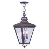 Cambridge Outdoor Hanging Lantern in Bronze