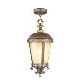 Seville Outdoor Hanging Lantern in Palacial Bronze