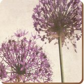 Purple Allium Coasters (Set of 6)