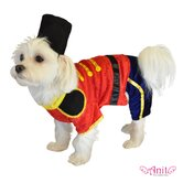 Toy Soldier Dog Costume