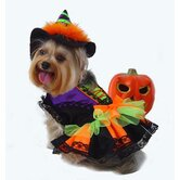 Halloween Witch Dog Costume