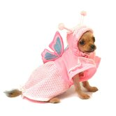 Lady Butterfly Dog Costume
