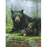 Hautman Bros Nap Time Bears Super Plush Throw