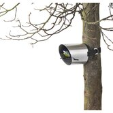 Borea Bird Feeder