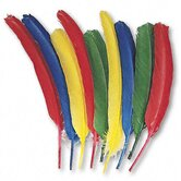 Quill Feathers, Assorted Colors, 24 Feathers per Pack