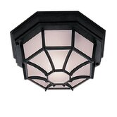 Outdoor and Porch Flush Mount in Black