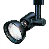 Swivel and Stem Luminaire Line Voltage Track Head