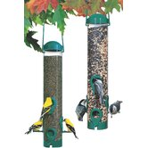 Any Seed Tube Feeder