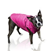 Puffy Dog Coat in Raspberry