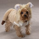 Lil Lion Dog Costumes