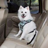 Plaid Car Harness