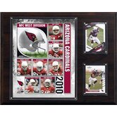 NFL 2010 Team Plaque