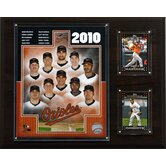 MLB 2010 Team Plaque