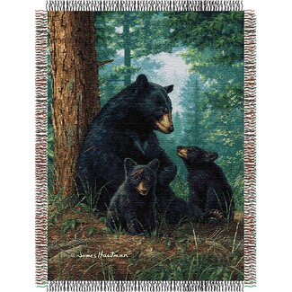 Northwest Co. Entertainment Tapestry Throw Blanket - Hautman Brothers Naptime