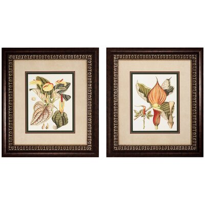 Propac Images Botanical I and III Framed Print Set (Set of 2)