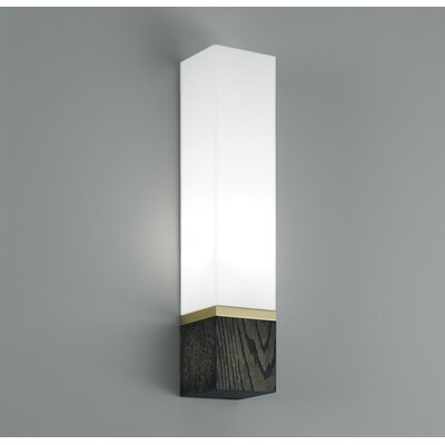 ILEX Lighting Cube 1 Light Tall Wall Sconce