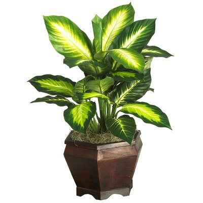 Nearly Natural Silk Golden Dieffenbachia Plant with Wood Vase in Green