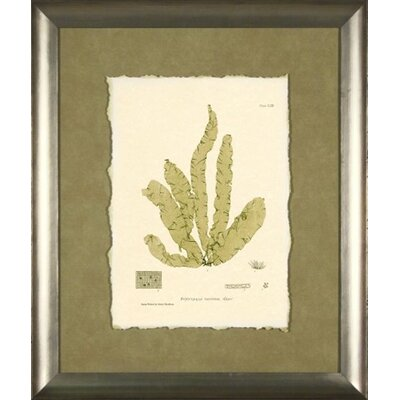 Phoenix Galleries Bradbury Print 2 Green Framed Print