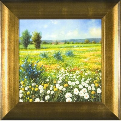 Phoenix Galleries Summer Meadow Framed Prints