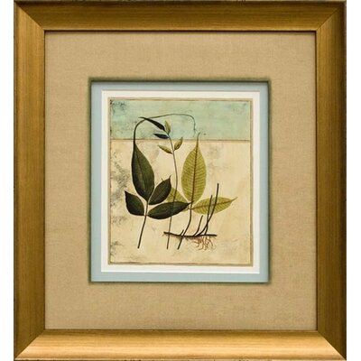Phoenix Galleries Tropical Fern Framed Prints