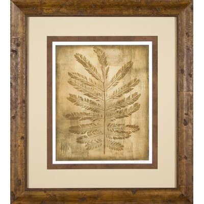 Phoenix Galleries Sepia Ferns 1 Framed Print