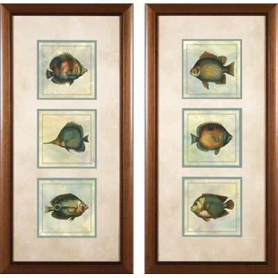 Phoenix Galleries 3 Tropical Fish Framed Prints