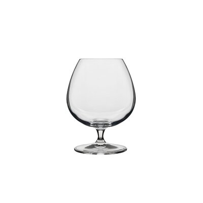 Luigi Bormioli Crescendo Brandy Snifter Glass (Set of 4)