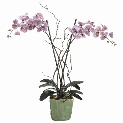 "Tori Home 38"" Phalaenopsis with Ceramic Container"