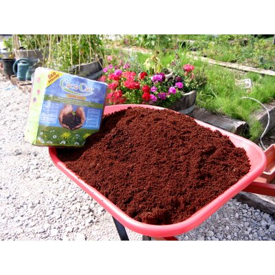 Nature's Footprint Coir Brick (5 kg)