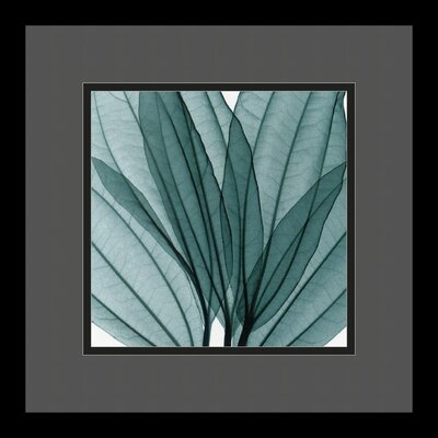 "Amanti Art Leaf Bouquet by Steven N. Meyers, Framed Print Art - 13.29"" x 13.29"""