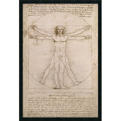 "Amanti Art Proportions of the Human Figure (Vitruvian) by Leonardo da Vinci, Framed Print Art - 37.66"" x 25.66"""
