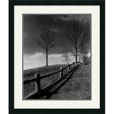 Amanti Art Fences And Trees, Empire, Mi Framed Art Print by Monte Nagler