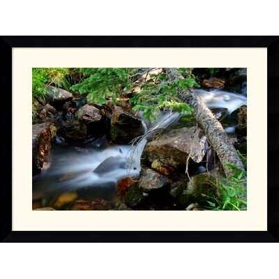 Mountain Stream by Andy Magee Framed Fine Art Print - 28.62