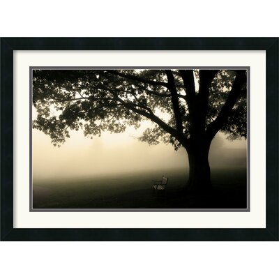 Amanti Art Shenandoah Framed Print by Andy Magee