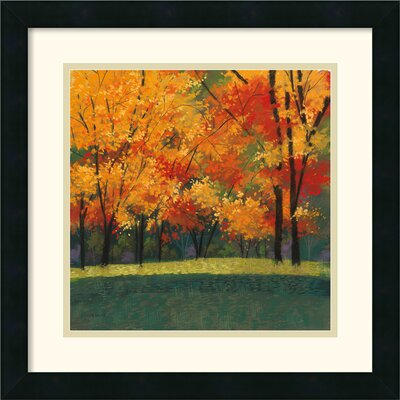 Bright Autumn Day I Framed Print by Lynn Krause