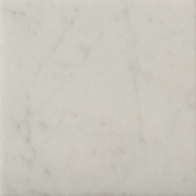 "Emser Tile Natural Stone 6"" x 6"" Honed Marble Field Tile in Bianco Gioia"