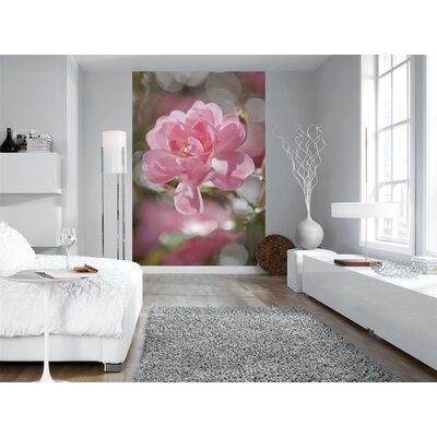 Brewster Home Fashions Komar Bouquet 4-Panel Photomural