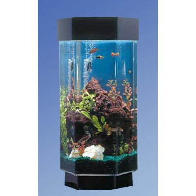 Aqua 15 Gallon Scape Hexagon Aquarium Kit | Wayfair