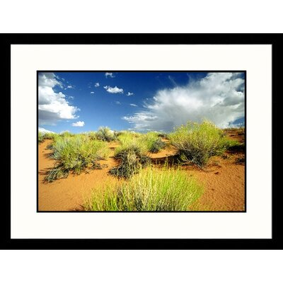 Great American Picture Near Colorado River Page, Arizona Framed Photograph - James Denk
