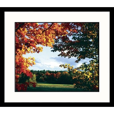 Great American Picture Fall Colors Framed Photograph