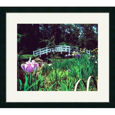 Great American Picture Duke Gardens Framed Photograph