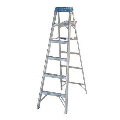 Werner Aluminum Step Ladder